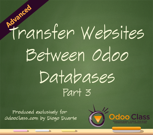 Transfer Websites Between Odoo Databases - Part 3