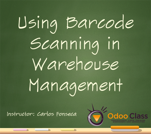 Using Barcode Scanning in Warehouse Management