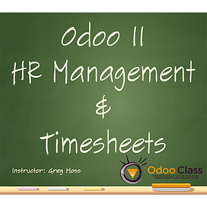 Odoo 11 HR Management & Timesheets